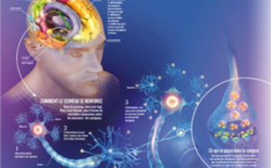 La Sophrologie le stress, la fatigue, et la dépression.